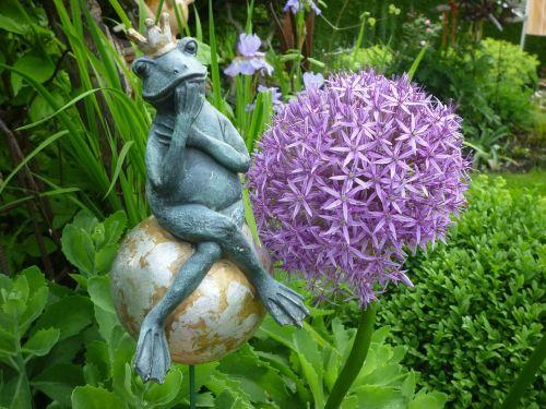 varlė,molio figūra,sodas,dekoratyvinis svogūnas,pasakos princas
