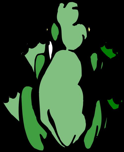 varlė,amfibija,atogrąžų miškai,džiunglės,egzotiškas,laukinė gamta,atogrąžų varlė,rupūžė,Amazon,Medžio varlė,terariumas,nuodų varlė,aqua,hop,laukiniai,ekosistemos,ekologija,šokinėti,lauke,aplinka,lieknas,nemokama vektorinė grafika