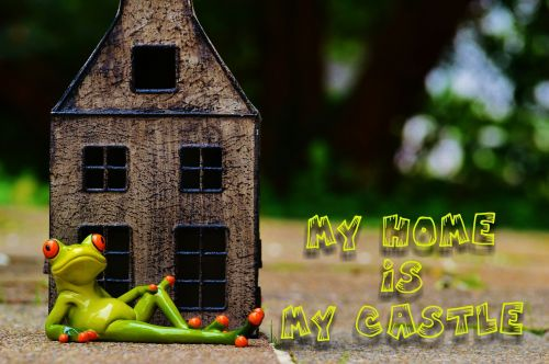 varlė,namie,mano namai yra mano pilis,juokinga,linksma,atsipalaidavęs,mielas,figūra,gyvūnas,varlės,apdaila