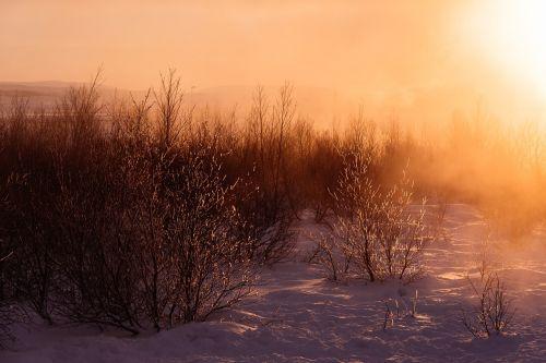 ledinis,sniegas,sniegas,žiema,žiemą,balta,gamta,šaltas,sezonas,medis,kraštovaizdis,ledas,miškas,lauke,gruodžio mėn .,scena,sušaldyta,kaimas,parkas,vaizdingas,oras,ledinis,Kalėdos,mediena,dangus,sezoninis,užšaldyti,filialas,xmas,mėlynas,padengtas,Šalis,kelias,kelionė,natūralus,šventė