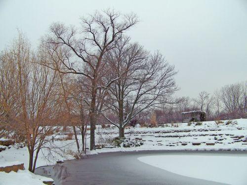 sušaldyta, tvenkinys, žiema, ledas, sniegas, medžiai, užšalus tvenkinys