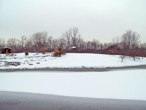 sušaldyta, tvenkinys, ledas, žiema, medžiai, sniegas, užšalus tvenkinys
