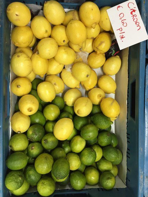 vaisiai,citrusiniai,citrina,kalkės