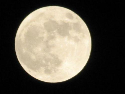 pilnas,mėnulis,dangus,naktis,tamsi,erdvė,žėrintis,mėnulis,fazė,sfera,paviršius,ciklą,astronomija,astrologija,kosmosas,apvalus,mėnulio šviesa,Orbita,dangaus,visata,planeta,mokslas,šviesus,krateris,švytėjimas,Luna,sistema,saulės energija,orbita,ratas,baugus,beprotybė,tyrinėjimas