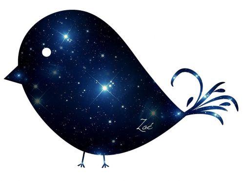 galaktika,paukščiai,ave,sparnai,paukštis,dangus,mėlyna galaktika