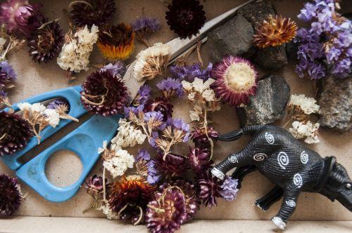 žaidimai,amatų projektas,džiovintos gėlės,kūrybiškumas,grožis,Pasidaryk pats,amatai