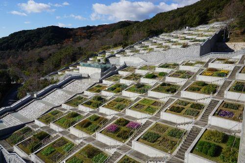 sodas,botanika,laiptinė,architektūra