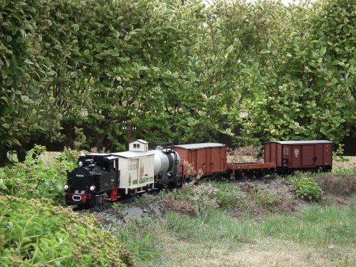 sodo geležinkelis,garo lokomotyvas,prekinis traukinys,LGB,modelio traukinys,sodas,traukinys,lengvieji automobiliai,hobis,laisvalaikis,modelio geležinkelis,atsipalaidavimas,džiaugsmas,judėjimas,atrodė,gleise,geležinkelio eismas,traukiniai,transporto priemonė,geležinkelis