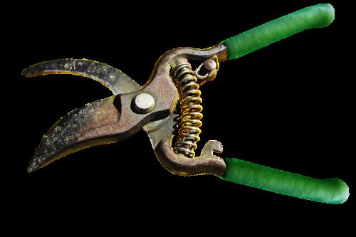 sodininkystė, įrankis, Žemdirbystė, sodininkas, įranga, be honoraro mokesčio