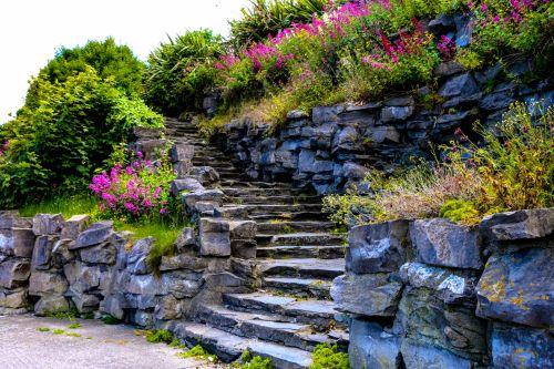 sodas, sodai, Airija, gėlės, gamta, laiptai, sodai ireland
