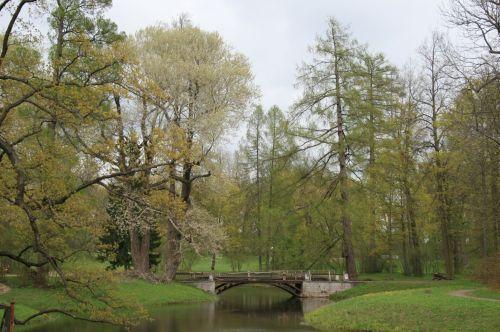 sodai, žalias, medžiai, žolė, srautas, tiltas, sodai ant tsarskoe selo dvaro