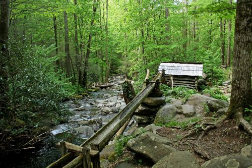 Gatlinburg,Tennessee,upė,uolingas,vanduo,gražus,malūnas,miltų malūnas,schapfe malūnas,pastatas