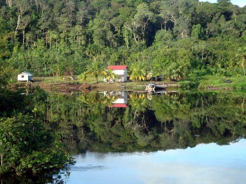 gajana,džiunglės,upė,aušra,miškas,rytas,kelionė,medžiai,atspindys,šviesa,demerara upė,upė demerara,sistemos atspindžių vardų sritis,debesys,vanduo,ankstus rytas