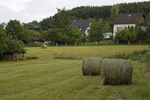 Vokietija, Sauerland, kraštovaizdis, Žemdirbystė, Hay, ariamoji žemdirbystė, kaimo, žemės ūkio, lauko gyvenimas