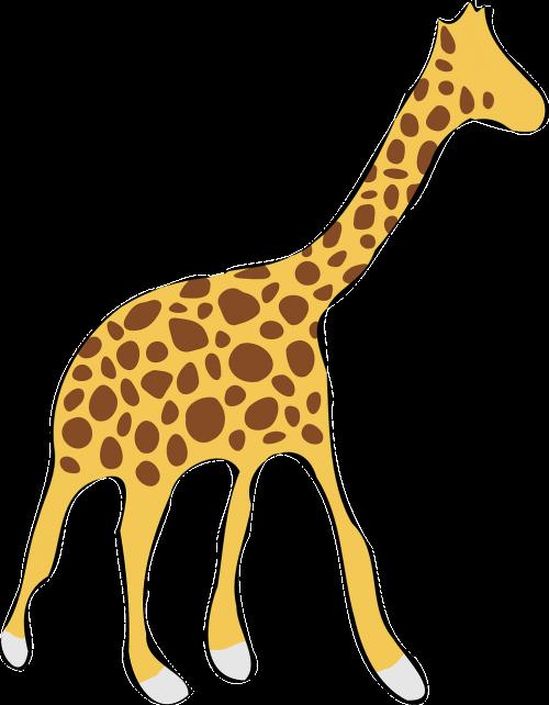 žirafa,laukinė gamta,afrika,gyvūnas,dideli penki,nemokama vektorinė grafika