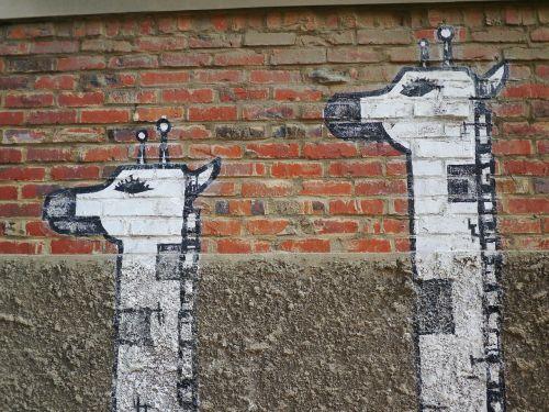 žirafa,fjeras,Korėja,eilinis rūmai rytuose,grafiti,piešimas,nuotrauka,gyvūnas