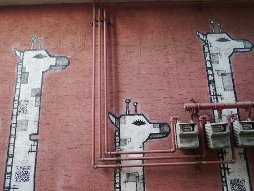 žirafa,Korėja,fjeras,piešimas,eilinis rūmai rytuose,grafiti,gyvūnas,raudona