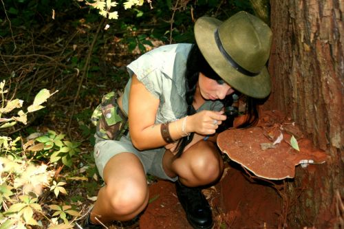 mergaitė,tyrėjas,didintuvas,miškas,džiunglės,grybai,laukiniai