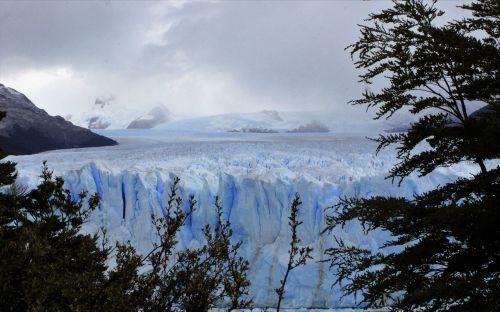 ledynas,perito moreno,kraštovaizdis,argentina,patagonia,kalafatas,pietų argentina