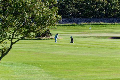 golfas,golfo laukas,golfo žaidėjas,žalias,žinoma,žolė,Sportas,žaidimas,golfo aikštynas,poilsis,laisvalaikis,klubas,lauke,rutulys,skylė,žaisti,farvaterius,grubus,bunkeriai,golfo vėliava,pratimas,hobis,golfas,vyras,golfo lazdos