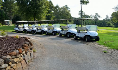 golfas, krepšelis, golfas, lauke, golfo žaidėjas, elektrinis, laisvalaikis, ratai, klubas, linksma, veikla, važiuoti, veja, žinoma, vasara, transporto priemonė, farvaterius, poilsis, transportas, vairuoti, gabenimas, varzybos, hobis, buggy, maišas, žaisti, skylė, atostogos, žaidimas, Sportas, golfo vežimėliai