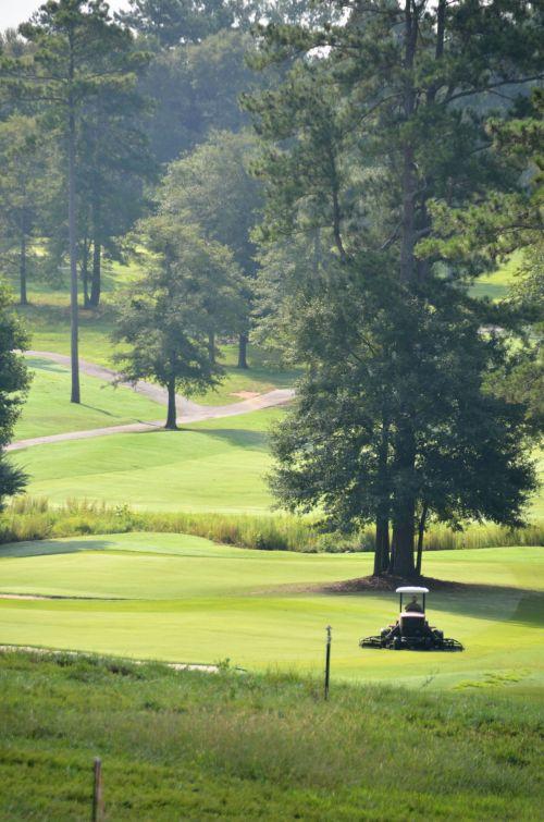 golfas, žalias, laisvalaikis, linksma, žinoma, žolė, poilsis, įdėti, išėjimas į pensiją, žaisti, Sportas, kraštovaizdis, golfo laukas