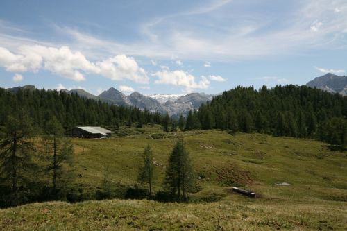 gotzalm,Plato,Alpių pievų plotas,Steinernes meer,velnio ragas,berchtesgadeno nacionalinis parkas,ganykla,alm,Nacionalinis parkas