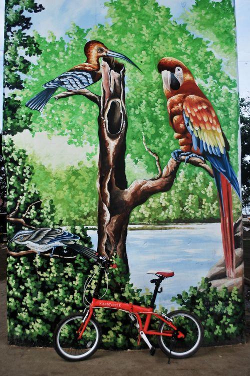 grafiti,purškiami dažai,parkas,betonas,spalvinga,spalvinga,miesto,siena,dažyti,dviratis