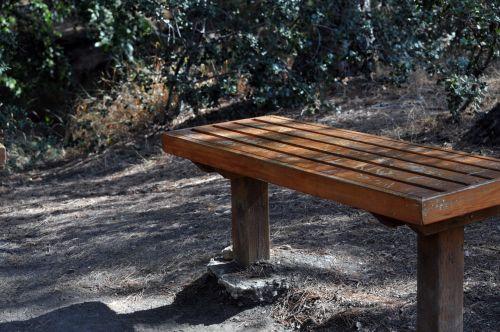 grafiti, deface, žodis, žodžiai, mediena, medinis, žygis, žygiai, takas, inicialai, simboliai, miškas, stendas, sėdynė, graffiti medžio drožyba # 1