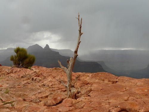 Didysis kanjonas,Gorge,medis,griauna,audra,Rokas,debesys,lietus