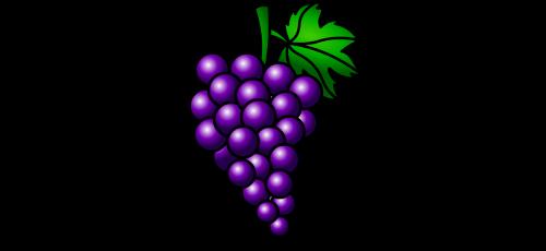 vynuogės,vaisiai,klasteris
