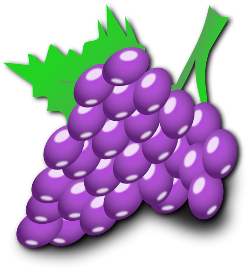 vynuogės,vaisiai,krūva,violetinė,mėlynas,žalias lapas,vynmedis,maistas,valgomieji,skanus,saldus,rūgštus,sveikas,užkandis,maistingas,apvalus,nemokama vektorinė grafika