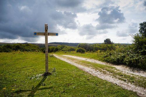žolė, gamta, dangus, ženklas, lauke, be honoraro mokesčio