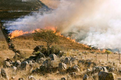 žolės ugnis, gaisrininkas, dūmai, prevencinis deginimas, Laukinė ugnis, Skubus atvėjis, aplinka, ugnies gesinimas, liepsna, rizika, krūmo ugnis, deginti, deginimas, priešgaisrinės juostos, grėsmė, karštas, šiluma, gamta, ekologija, sezonas, pavojus