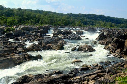 kraštovaizdis, gamta, upė, Potomac, puikus & nbsp, kritimas, Maryland, vanduo, potvynis, turbulencija, vanduo & nbsp, kritimas, puikus kritimas