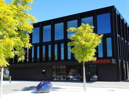 žalias medis,pastatas,architektūra,juoda,žalias,mėlynas dangus,lapai,kontrastas,į dangų