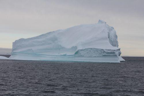 Grenlandija,ledkalnis,vanduo