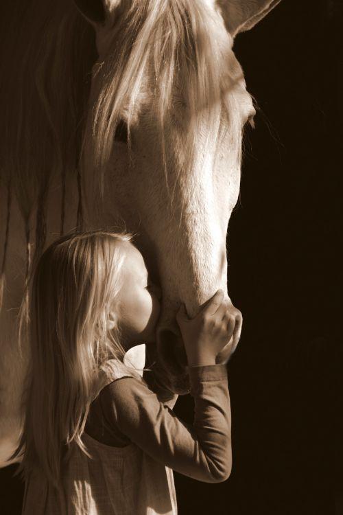 pilka,jodinėjimas,pilka,mergaitė,meilė,grožis,bučinys,dapple-pilka,arklys