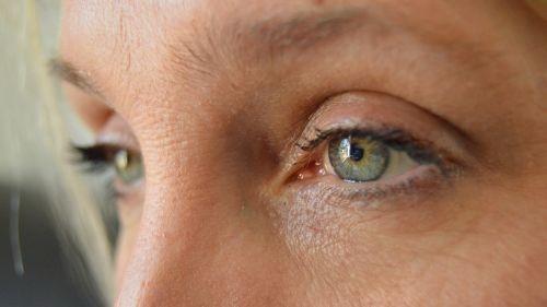 pilkos akys,veidas,mergaitė,akys,moteris,mielas,œil,portretas,atrodo,žalios akys