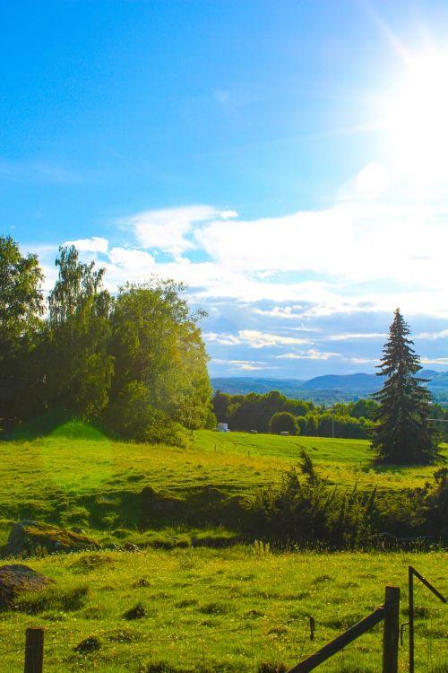 hage,lova,Himmel,medis,Švedija,peizažai