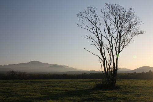 halla,ranča,saulėlydis