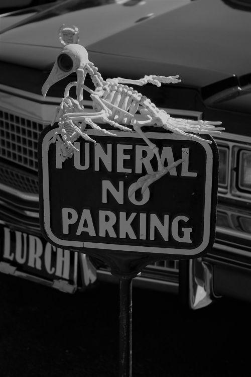 Halloween,Lurch,skeletas,creepy,lavonas,Undead,siaubas,vampyras,baisu,Halloween dekoro,addams šeimos,laidotuves,Halloween dekoravimas,monstras,saldus,gintaro avalona
