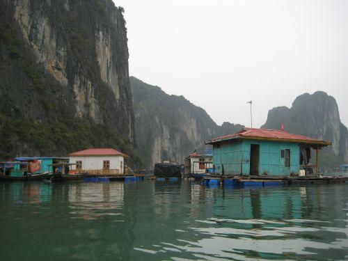 halongas,Halongo įlanka,įlanka,Vietnamas,Žvejų kaimelis,plaukiojantys namai,plaukiojantieji,vanduo,ežeras,kalnai,namai,namai,kaimas,architektūra,pastatas,miestas,architektūros dizainas,struktūra,namai,gyvenamasis,eksterjeras,gyvenamoji vieta,būstas