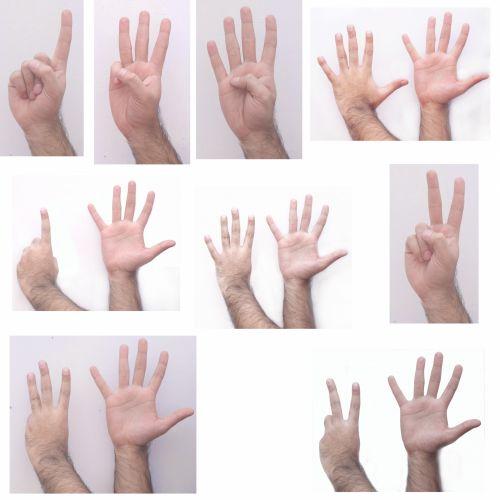 ranka, išraiškos, žmonės, gestikuliavimas, galūnės, kūnas, dalys, kryptis, rankos frazės 2