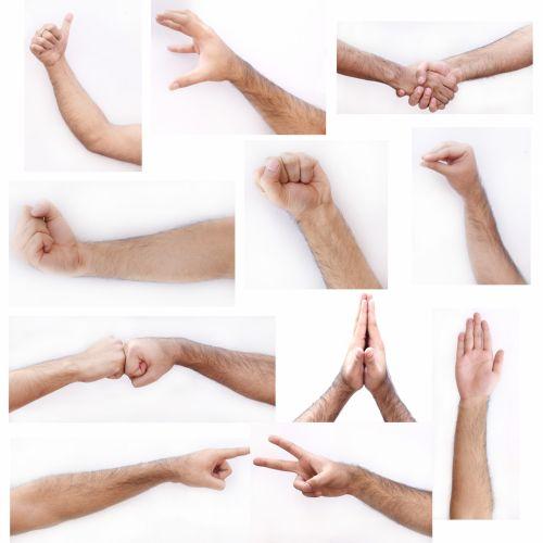 ranka, išraiškos, žmonės, gestikuliavimas, galūnės, kūnas, dalys, kryptis, rankos frazės
