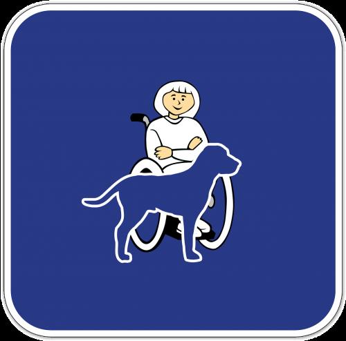 negalia,kompanioninis šuo,serviso šuo,gydymo šuo,pagalbos šuo,šuo,neįgalus,neįgaliųjų vežimėlis,apsauga nuo negalios,fizinė negalia,negalia,Rolli,sutrikusios,judėjimas,dizainas