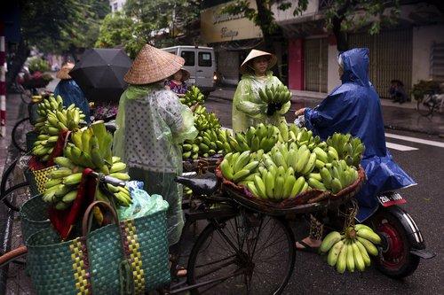 Hanojus gatvės maisto, anksti ryte Hanojus, Hanojus rinka