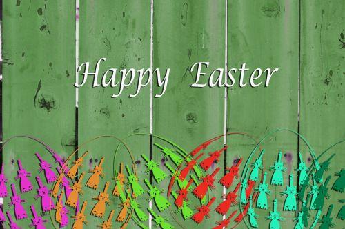 Velykos, katės, kiaušinis, kiaušiniai, tvora, spalvinga, pasveikinimas, e-kortelė, laimingas pasninko pasveikinimas