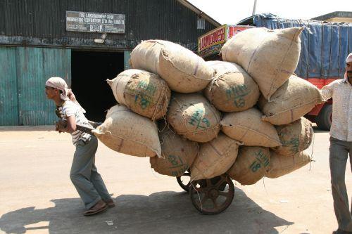 sunkus darbas,maišeliai,gabenimas,Indija,maišytuvas,sunkus krūvis