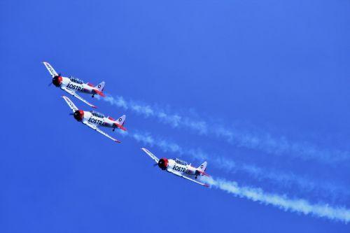 orlaivis, radialinis, rodyti, komanda, oro šou, dūmai, harvardo aerobačių komanda